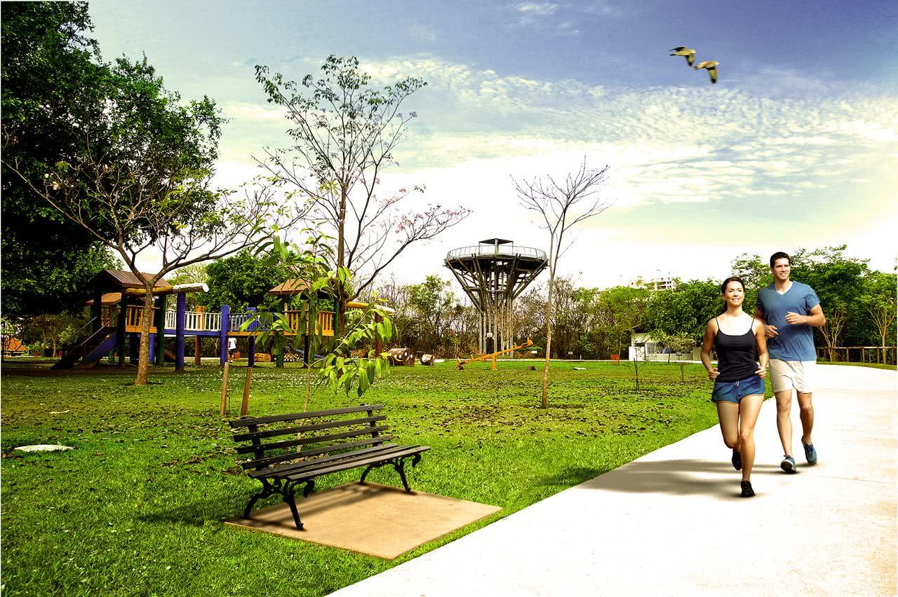 Sonhar com parque